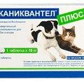 kanikvantel-dlya-koshek_120x120_60d.jpg