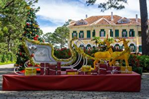 Vietnam_Parks_Christmas_Deer_Park_Bao_Dai_King_600311_600x400.jpg
