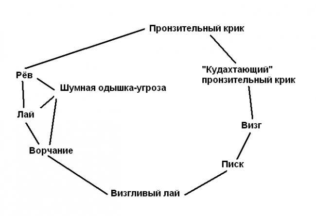 yazyk_makak-rezusov.png