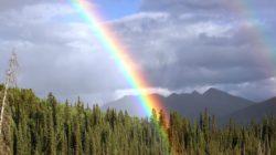 rainbow-436183_1280-250x140.jpg
