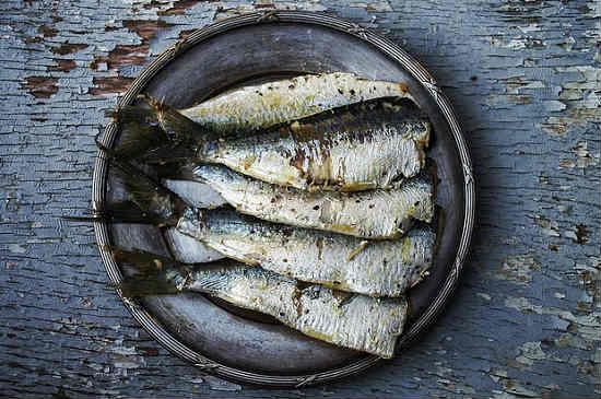 Sardiny-kakaya-eto-ryba.jpg