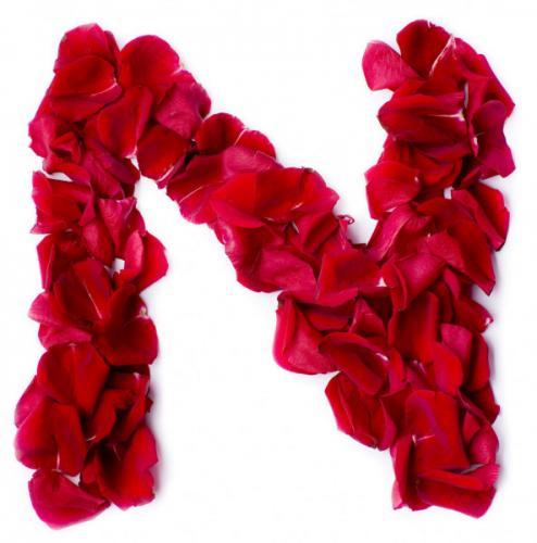 depositphotos_10859043-stock-photo-alphabet-n-made-from-red.jpg