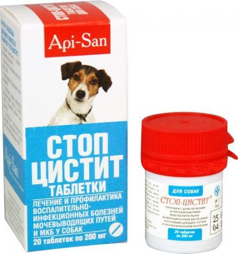 Antibiotiki-dlya-sobak-10.jpg