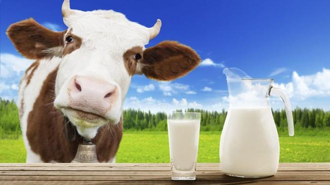 korovie-milk.jpg
