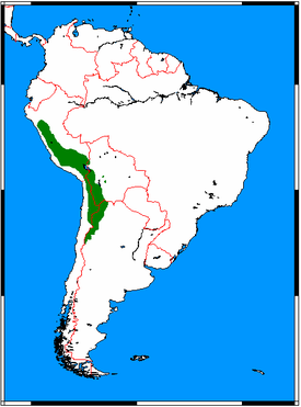 275px-Vicugna_vicugna_range_map.png