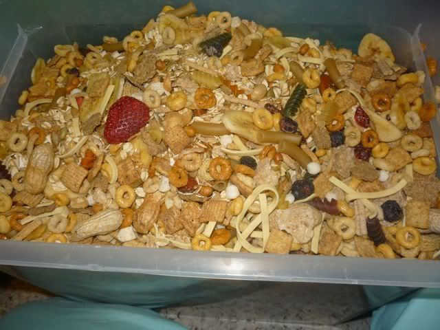 food%20for%20the%20home%20rats1.jpg