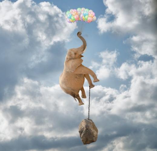 depositphotos_14848701-stock-photo-elephant-flying-with-balloons.jpg