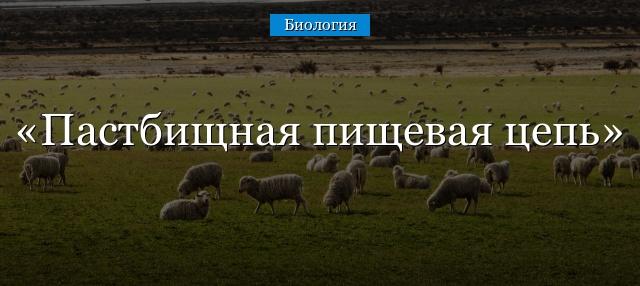 pastbischnaya-pischevaya-cep.jpg