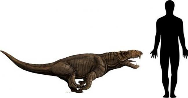 storymaker-ancient-predator-paleozoic-brazi.jpg
