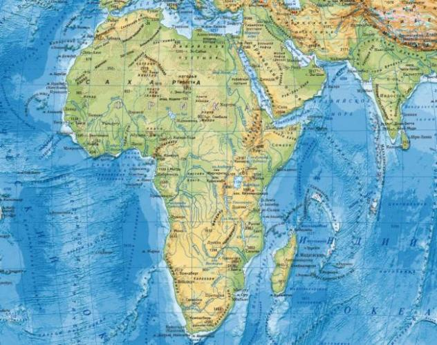 dikaya-priroda-afriki-xishhniki-20.jpg