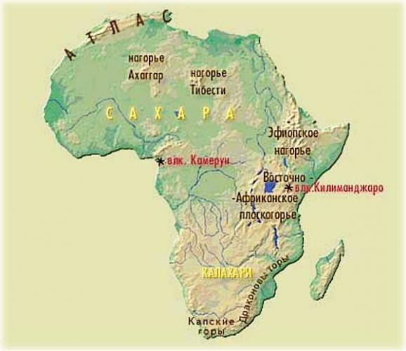 dikaya-priroda-afriki-xishhniki.jpg
