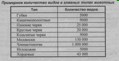 Primernoe-kolichestvo-vidov-v-glavnyih-tipah-zhivotnyih.png