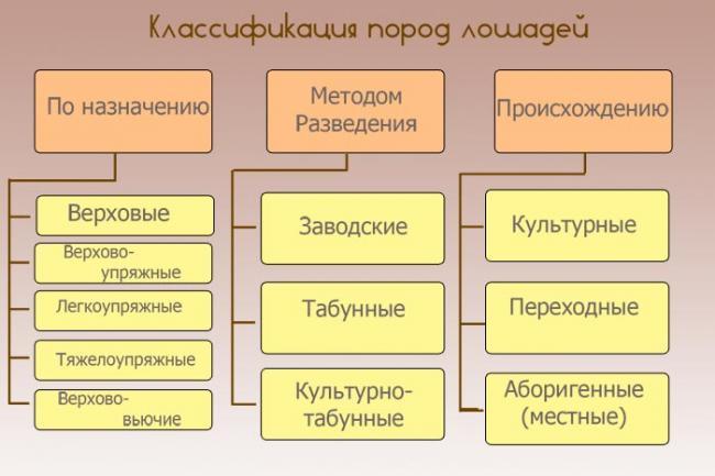 russkie-porody-2.jpg
