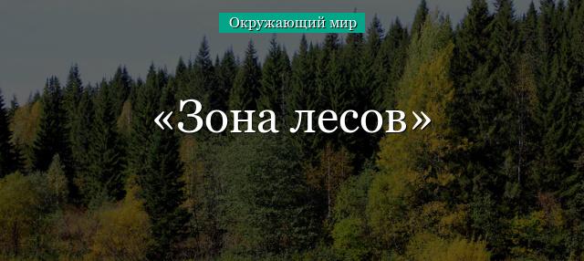 zona-lesov.jpg