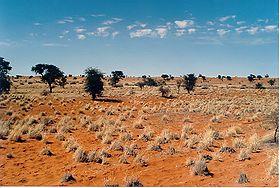 280px-Kalahari_E02_00.jpg