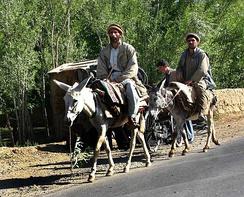 im244-297px-Men_on_donkeys%2C_Afghanistan.jpg