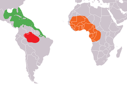 250px-Mapa_distribuicao_Trichechus.png