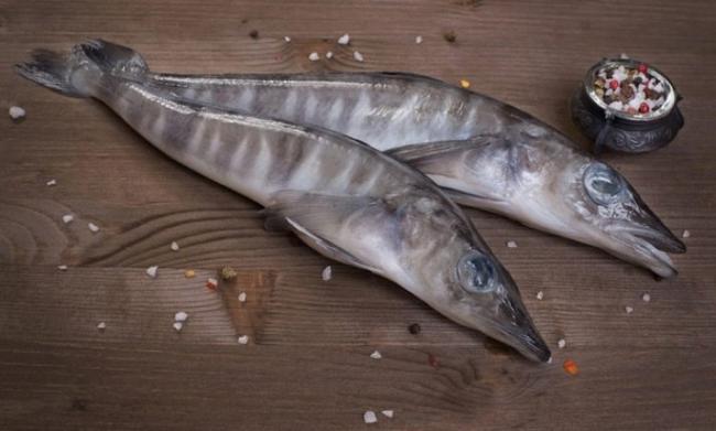 ledyanaya-ryba-opisanie-sostav-i-kalorijnost-polza-i-vred-8.jpg