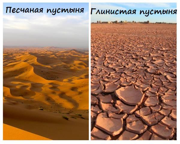 Виды-пустынь.png