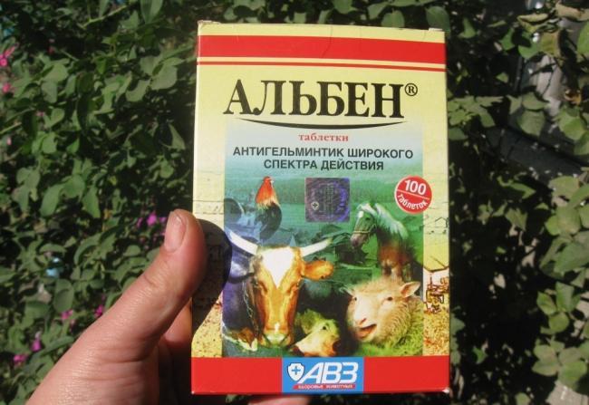 alben-instrukciya-po-primeneniyu-v-veterinarii-8.jpg