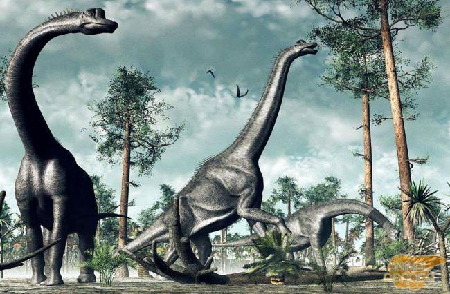 brachiozaury-krupnejshij-travojadnyh-zhivotnyh_1.jpg
