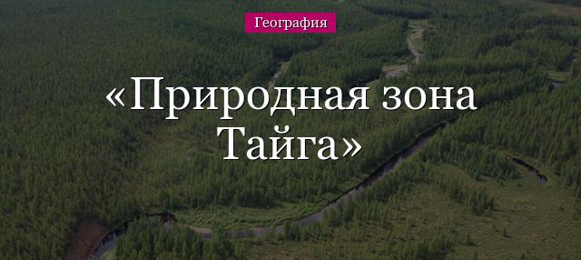 prirodnaya-zona-tayga.jpg
