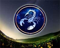 skorpion-min.jpg