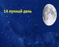 14-moon-day-min.jpg