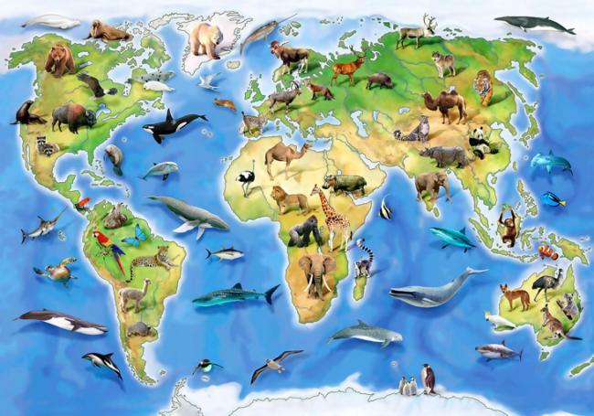 animal-map.jpg