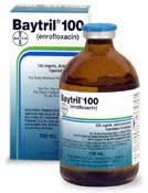baytril100lg.jpg