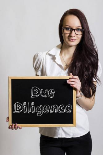 depositphotos_262713160-stock-photo-due-diligence-young-businesswoman-holding.jpg