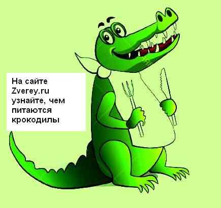 krokodil-est.jpg