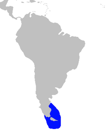 220px-Commerson%27s_dolphin_South_America_distribution.png