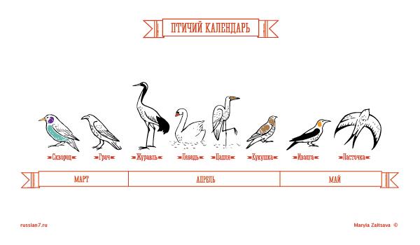 pticyj-kalendar.jpg