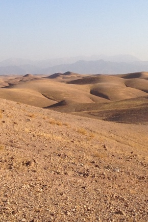 pochvy-pustyn-i-polupustyn.jpg