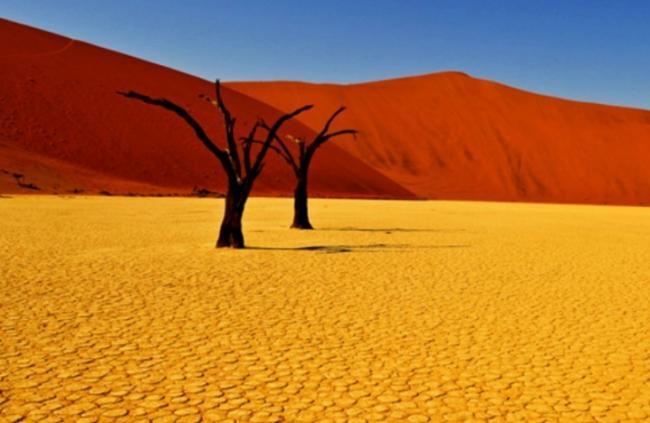 pochvy-pustyn-i-polupustyn-1.jpg