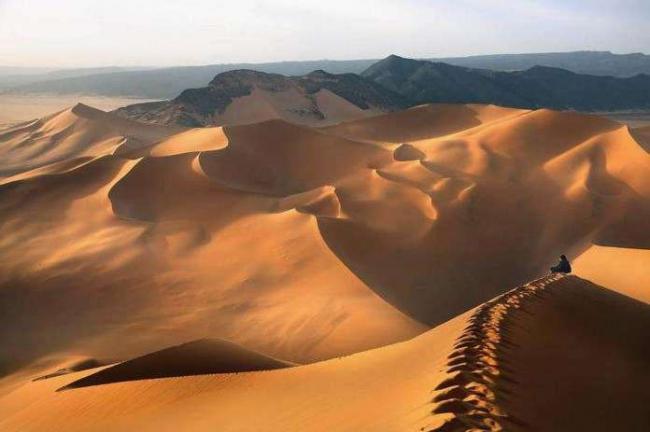 Prirodnaya-zona-pustynya.jpg