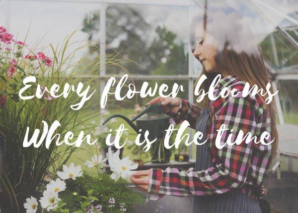 depositphotos_155563226-stock-photo-woman-watering-flowers-in-greenhouse.jpg