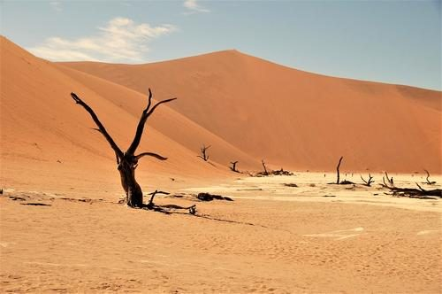 Pustyni-Afriki-Namib-500x332.jpg