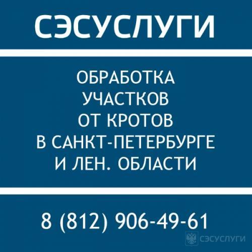 1492756975_telefont-ses.jpg